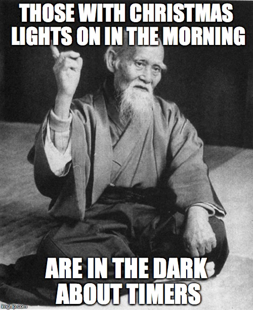 Confucius say | THOSE WITH CHRISTMAS LIGHTS ON IN THE MORNING ARE IN THE DARK ABOUT TIMERS | image tagged in confucius say | made w/ Imgflip meme maker