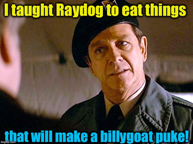 Col. Trautman 2 | I taught Raydog to eat things that will make a billygoat puke! | image tagged in col trautman 2 | made w/ Imgflip meme maker