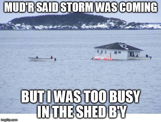Newfoundland | MUD'R SAID STORM WAS COMING BUT I WAS TOO BUSY IN THE SHED B'Y | image tagged in newfoundland | made w/ Imgflip meme maker
