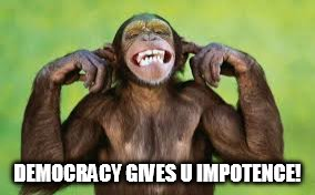 Laughing Monkey | DEMOCRACY GIVES U IMPOTENCE! | image tagged in democracy,hypocrisisy,waveyourbanana | made w/ Imgflip meme maker