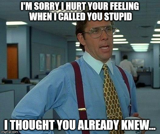 That Would Be Great Meme | I'M SORRY I HURT YOUR FEELING WHEN I CALLED YOU STUPID I THOUGHT YOU ALREADY KNEW... | image tagged in memes,that would be great | made w/ Imgflip meme maker