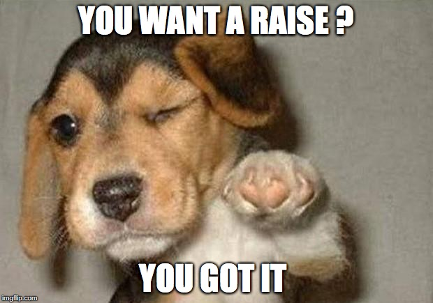 Winking Dog | YOU WANT A RAISE ? YOU GOT IT | image tagged in winking dog | made w/ Imgflip meme maker