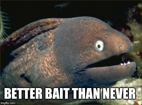 BETTER BAIT THAN NEVER | made w/ Imgflip meme maker