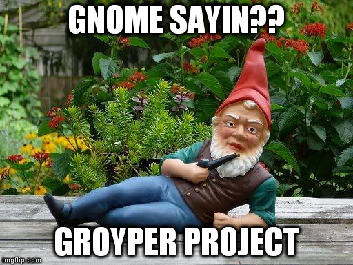 GNOME SAYIN?? GROYPER PROJECT | image tagged in thief gnome | made w/ Imgflip meme maker
