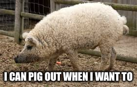 I CAN PIG OUT WHEN I WANT TO | made w/ Imgflip meme maker