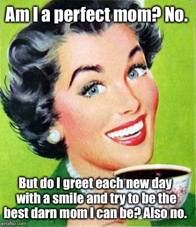 Mom | Am I a perfect mom? No. But do I greet each new day with a smile and try to be the best darn mom I can be? Also no. | image tagged in mom | made w/ Imgflip meme maker