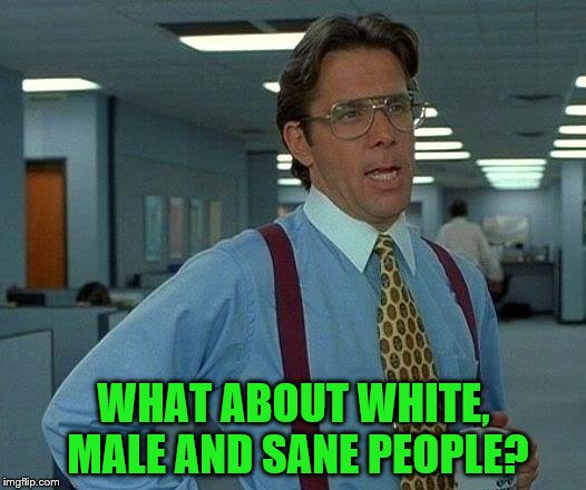 That Would Be Great Meme | WHAT ABOUT WHITE, MALE AND SANE PEOPLE? | image tagged in memes,that would be great | made w/ Imgflip meme maker