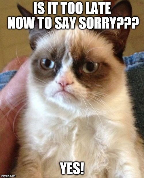 Grumpy Cat Meme | IS IT TOO LATE NOW TO SAY SORRY??? YES! | image tagged in memes,grumpy cat | made w/ Imgflip meme maker