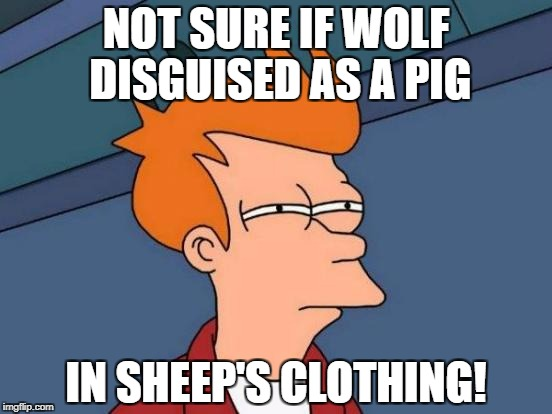 Futurama Fry Meme | NOT SURE IF WOLF DISGUISED AS A PIG IN SHEEP'S CLOTHING! | image tagged in memes,futurama fry | made w/ Imgflip meme maker