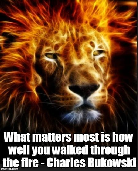 What matters most is how well you walked through the fire | image tagged in fire | made w/ Imgflip meme maker