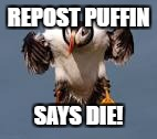 REPOST PUFFIN SAYS DIE! | made w/ Imgflip meme maker