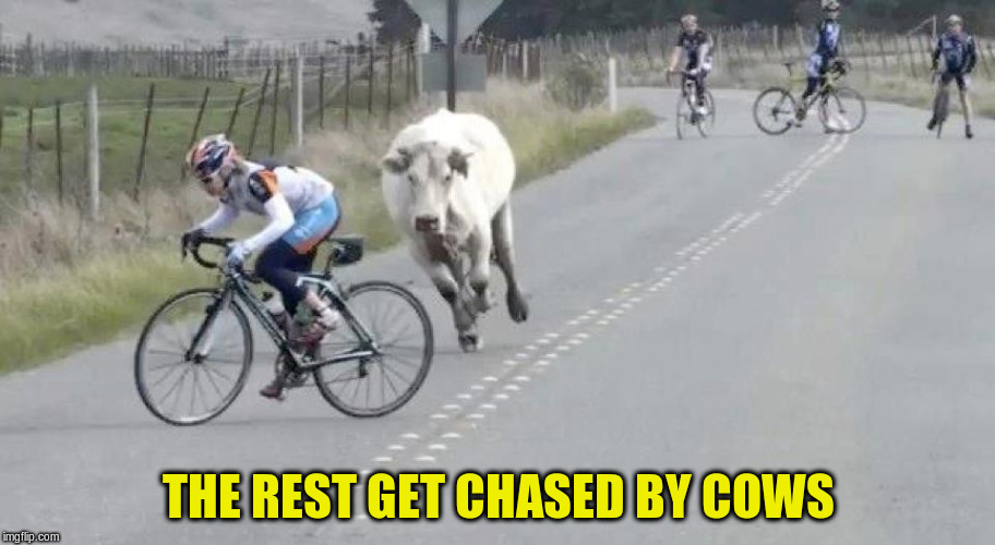 THE REST GET CHASED BY COWS | made w/ Imgflip meme maker