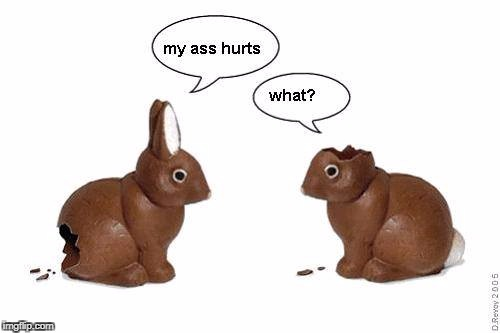 Look it's two Christmas Bunnies | image tagged in xmas memes business,bunnys for sale,chocolate candy,mmm | made w/ Imgflip meme maker