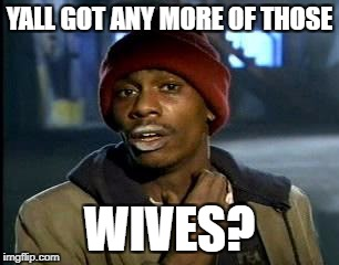 Y'all Got Any More Of That Meme | YALL GOT ANY MORE OF THOSE WIVES? | image tagged in memes,yall got any more of | made w/ Imgflip meme maker