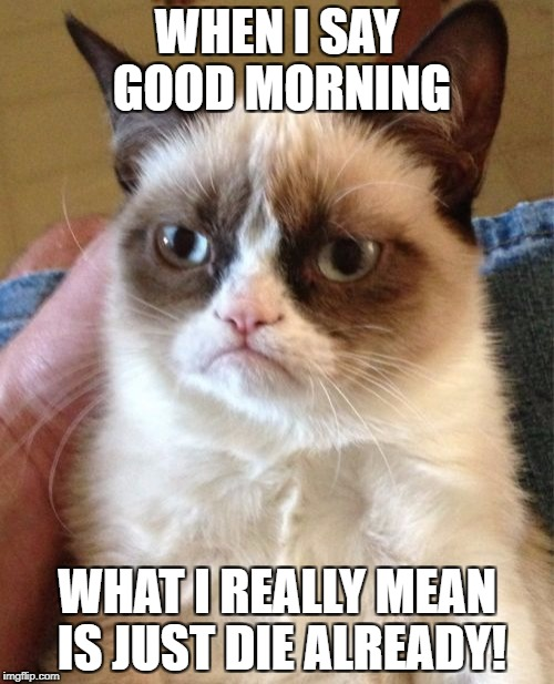 Grumpy Cat Meme | WHEN I SAY GOOD MORNING WHAT I REALLY MEAN IS JUST DIE ALREADY! | image tagged in memes,grumpy cat | made w/ Imgflip meme maker