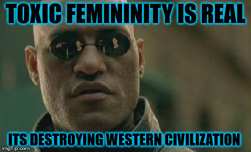 Matrix Morpheus Meme | TOXIC FEMININITY IS REAL ITS DESTROYING WESTERN CIVILIZATION | image tagged in memes,matrix morpheus | made w/ Imgflip meme maker