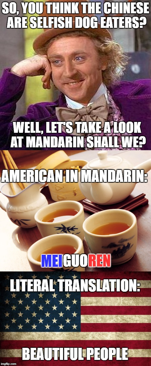 I finally decided to make this meme. Well, here it is! | SO, YOU THINK THE CHINESE ARE SELFISH DOG EATERS? WELL, LET'S TAKE A LOOK AT MANDARIN SHALL WE? BEAUTIFUL PEOPLE LITERAL TRANSLATION: MEI AM | image tagged in memes,creepy condescending wonka,chinese,china,america,american | made w/ Imgflip meme maker