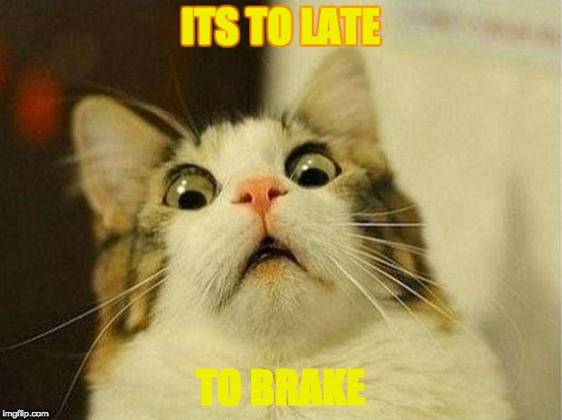 Scared Cat Meme | ITS TO LATE TO BRAKE | image tagged in memes,scared cat | made w/ Imgflip meme maker