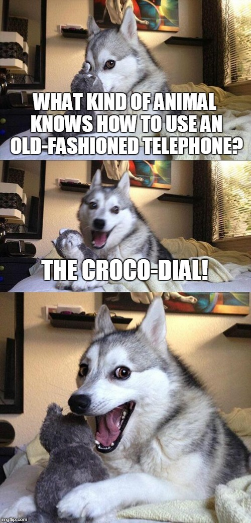 Somebody better call the Bad Pun Police | WHAT KIND OF ANIMAL KNOWS HOW TO USE AN OLD-FASHIONED TELEPHONE? THE CROCO-DIAL! | image tagged in memes,bad pun dog,bad puns,animals,africa,bad pun police | made w/ Imgflip meme maker