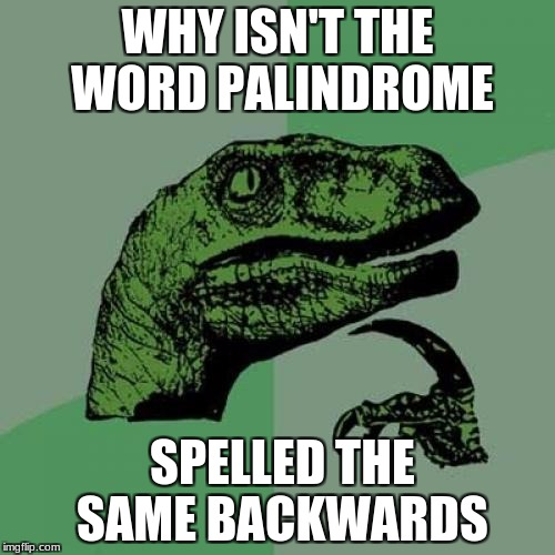 Philosoraptor Meme | WHY ISN'T THE WORD PALINDROME SPELLED THE SAME BACKWARDS | image tagged in memes,philosoraptor | made w/ Imgflip meme maker