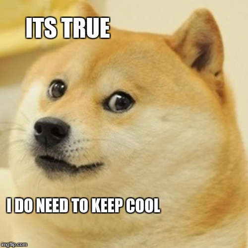 Doge Meme | ITS TRUE I DO NEED TO KEEP COOL | image tagged in memes,doge | made w/ Imgflip meme maker