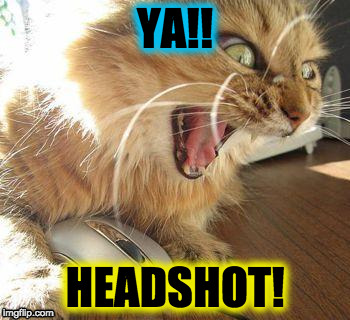 angry cat | YA!! HEADSHOT! | image tagged in angry cat | made w/ Imgflip meme maker