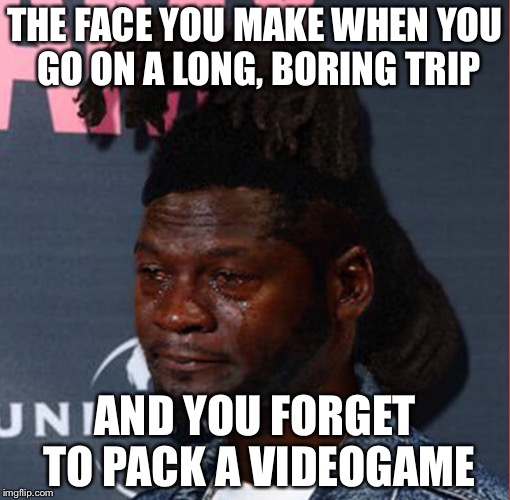 Sad face | THE FACE YOU MAKE WHEN YOU GO ON A LONG, BORING TRIP AND YOU FORGET TO PACK A VIDEOGAME | image tagged in memes,sad,forgetting to pack stuff | made w/ Imgflip meme maker