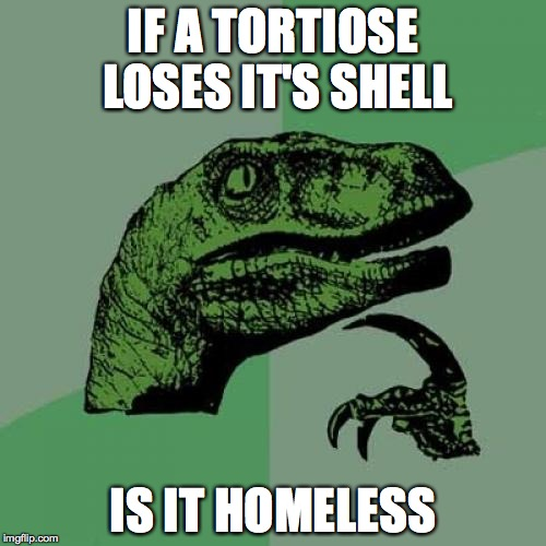 Philosoraptor Meme | IF A TORTIOSE LOSES IT'S SHELL IS IT HOMELESS | image tagged in memes,philosoraptor | made w/ Imgflip meme maker