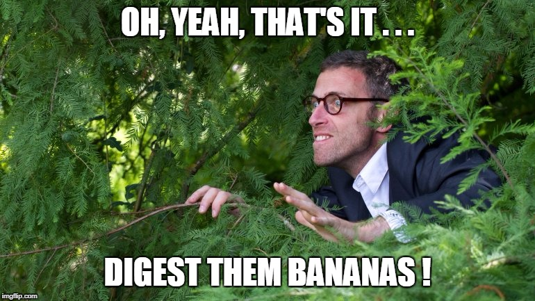 OH, YEAH, THAT'S IT . . . DIGEST THEM BANANAS ! | made w/ Imgflip meme maker