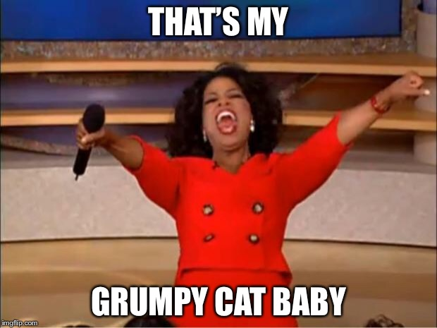 Oprah You Get A Meme | THAT'S MY GRUMPY CAT BABY | image tagged in memes,oprah you get a | made w/ Imgflip meme maker