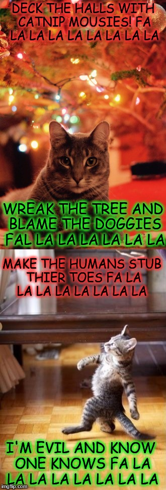 The New Christmas Song | DECK THE HALLS WITH CATNIP MOUSIES! FA LA LA LA LA LA LA LA LA WREAK THE TREE AND BLAME THE DOGGIES FAL LA LA LA LA LA LA MAKE THE HUMANS ST | image tagged in christmas cat,dancing cat | made w/ Imgflip meme maker
