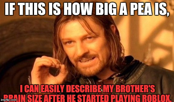 One Does Not Simply Meme | IF THIS IS HOW BIG A PEA IS, I CAN EASILY DESCRIBE MY BROTHER'S BRAIN SIZE AFTER HE STARTED PLAYING ROBLOX. | image tagged in memes,one does not simply | made w/ Imgflip meme maker