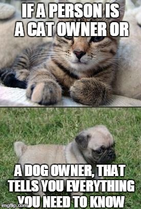 IF A PERSON IS A CAT OWNER OR A DOG OWNER, THAT TELLS YOU EVERYTHING YOU NEED TO KNOW | image tagged in dog cat | made w/ Imgflip meme maker