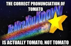 tomato | image tagged in funny,meme,funny memes,sarcastic | made w/ Imgflip meme maker