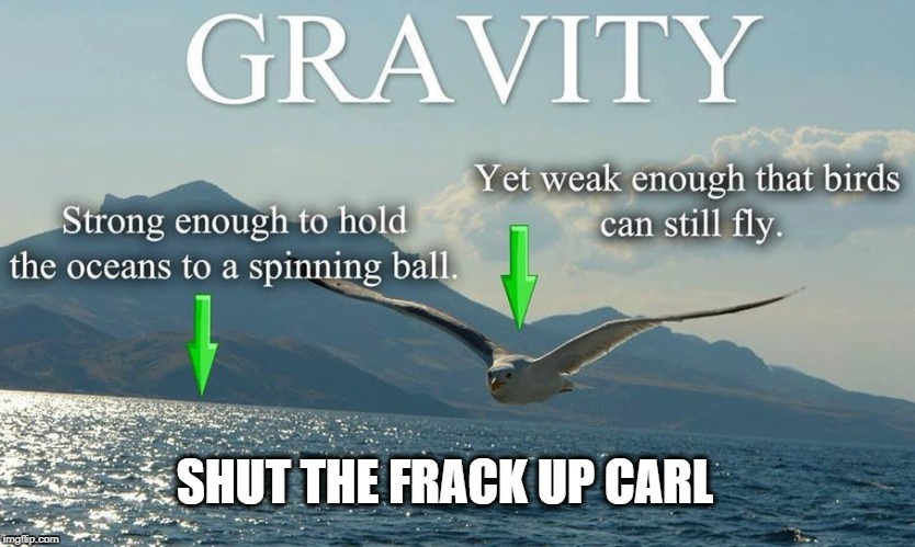 SHUT THE FRACK UP CARL | image tagged in gravity,birds,carl,frack | made w/ Imgflip meme maker