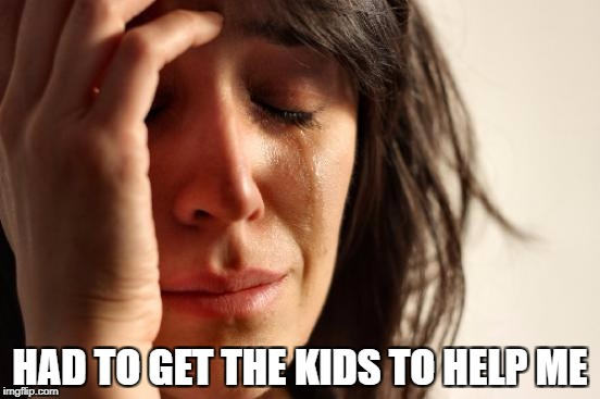 First World Problems Meme | HAD TO GET THE KIDS TO HELP ME | image tagged in memes,first world problems | made w/ Imgflip meme maker