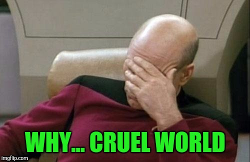 Captain Picard Facepalm Meme | WHY... CRUEL WORLD | image tagged in memes,captain picard facepalm | made w/ Imgflip meme maker