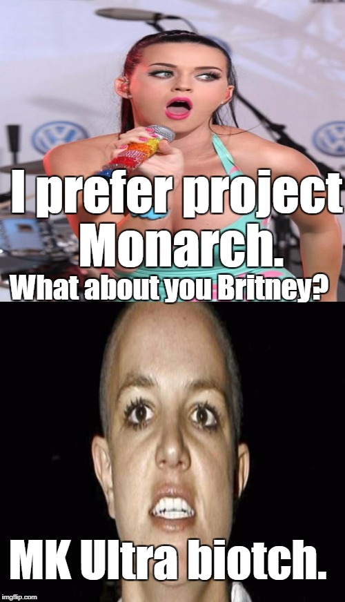 I prefer project Monarch. MK Ultra biotch. What about you Britney? | made w/ Imgflip meme maker