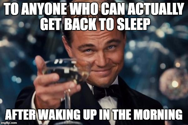 Leonardo Dicaprio Cheers Meme | TO ANYONE WHO CAN ACTUALLY GET BACK TO SLEEP AFTER WAKING UP IN THE MORNING | image tagged in memes,leonardo dicaprio cheers | made w/ Imgflip meme maker