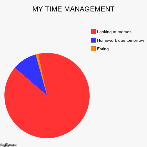 MY TIME MANAGEMENT | Eating, Homework due tomorrow , Looking at memes | image tagged in funny,pie charts | made w/ Imgflip pie chart maker