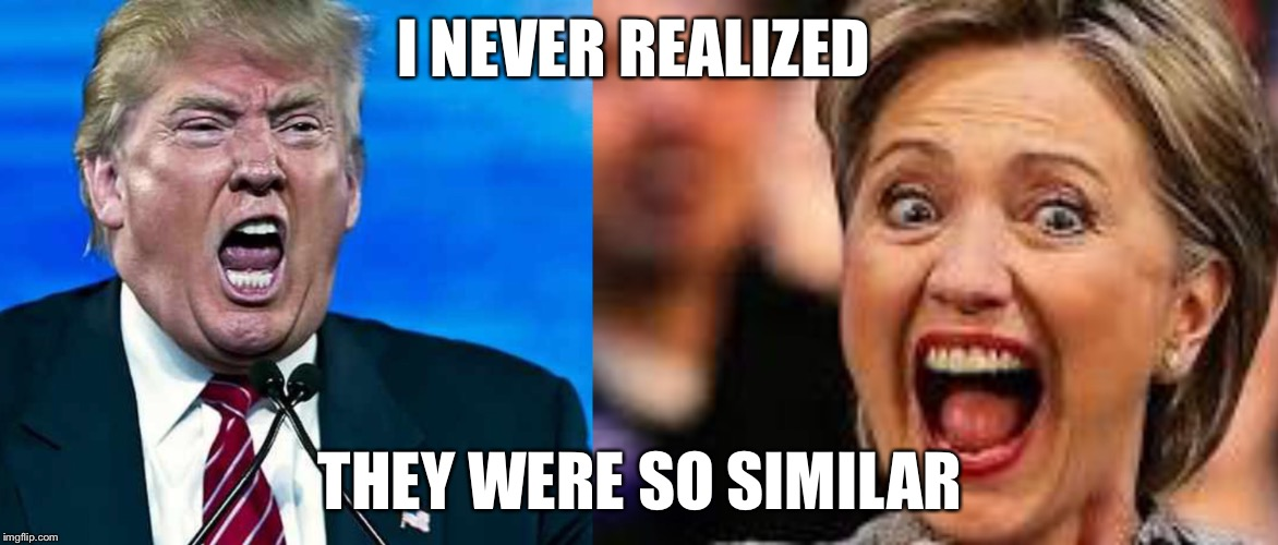 I never realized they were so similar... |  I NEVER REALIZED; THEY WERE SO SIMILAR | image tagged in donald trump,hillary clinton,memes | made w/ Imgflip meme maker