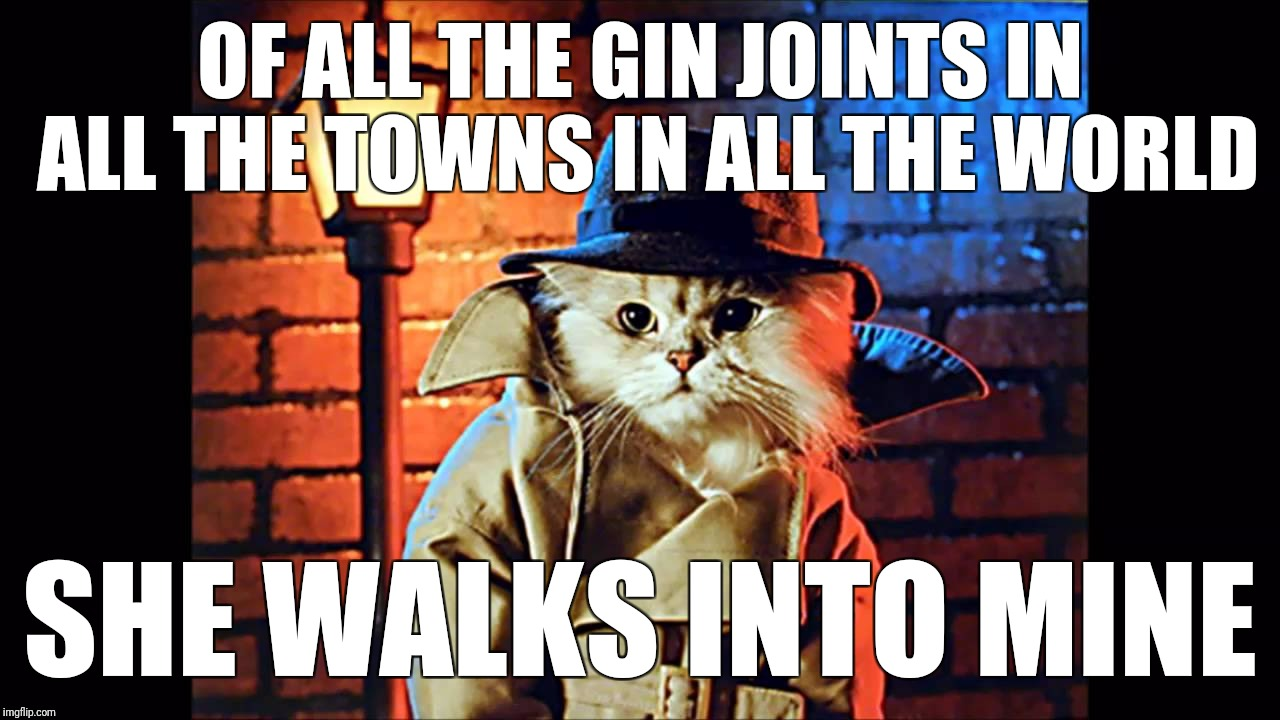 OF ALL THE GIN JOINTS IN ALL THE TOWNS IN ALL THE WORLD SHE WALKS INTO MINE | made w/ Imgflip meme maker