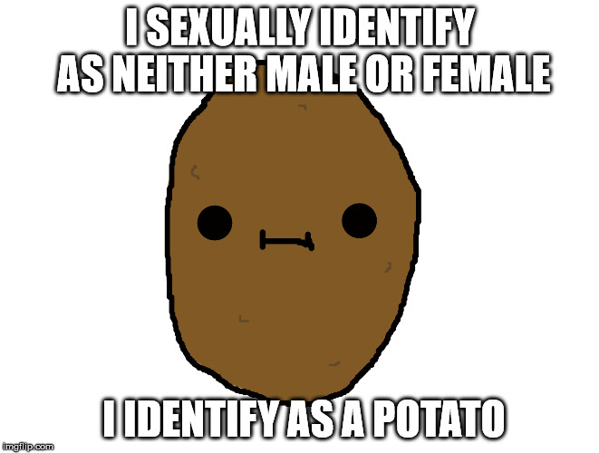 1001 Genders | I SEXUALLY IDENTIFY AS NEITHER MALE OR FEMALE I IDENTIFY AS A POTATO | image tagged in potato,femenist,derpy,cute | made w/ Imgflip meme maker