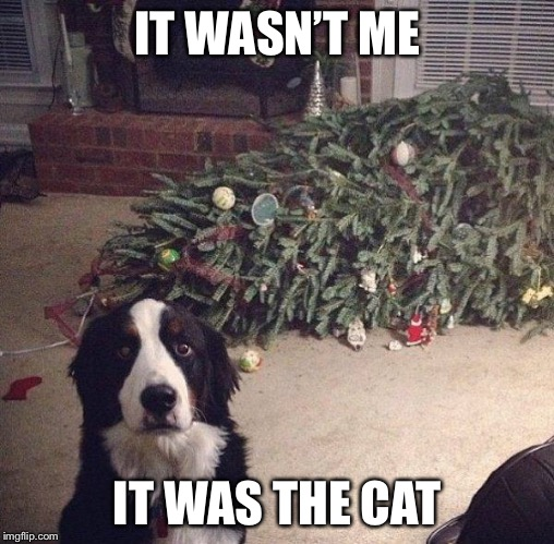 Dog Christmas Tree | IT WASN'T ME IT WAS THE CAT | image tagged in dog christmas tree | made w/ Imgflip meme maker