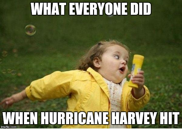 Chubby Bubbles Girl Meme | WHAT EVERYONE DID WHEN HURRICANE HARVEY HIT | image tagged in memes,chubby bubbles girl | made w/ Imgflip meme maker