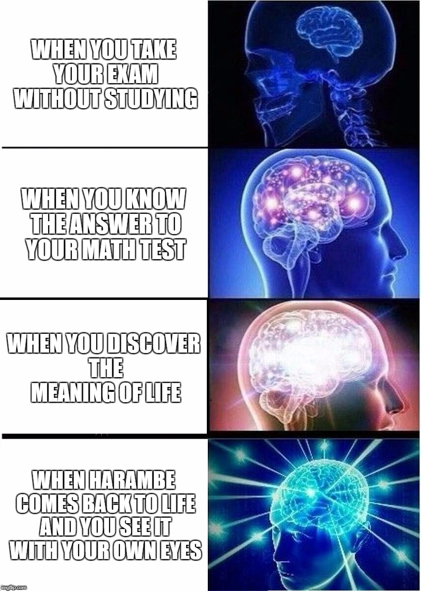 Expanding Brain Meme | WHEN YOU TAKE YOUR EXAM WITHOUT STUDYING WHEN YOU KNOW THE ANSWER TO YOUR MATH TEST WHEN YOU DISCOVER THE MEANING OF LIFE WHEN HARAMBE COMES | image tagged in memes,expanding brain | made w/ Imgflip meme maker