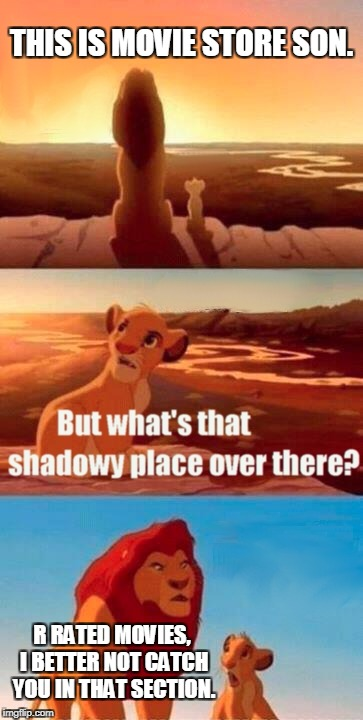Simba Shadowy Place Meme | THIS IS MOVIE STORE SON. R RATED MOVIES, I BETTER NOT CATCH YOU IN THAT SECTION. | image tagged in memes,simba shadowy place | made w/ Imgflip meme maker