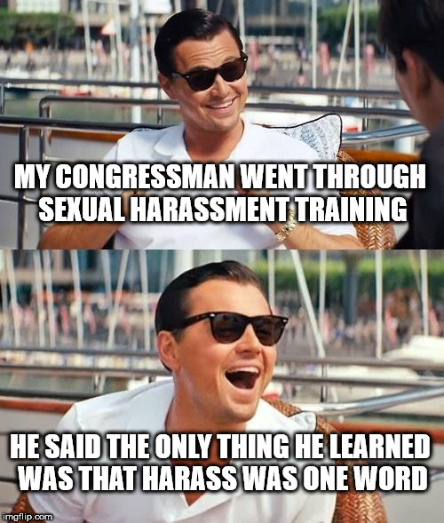 Leonardo Dicaprio Wolf Of Wall Street Meme | MY CONGRESSMAN WENT THROUGH SEXUAL HARASSMENT TRAINING HE SAID THE ONLY THING HE LEARNED WAS THAT HARASS WAS ONE WORD | image tagged in memes,leonardo dicaprio wolf of wall street | made w/ Imgflip meme maker