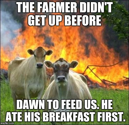 Evil Cows Meme | THE FARMER DIDN'T GET UP BEFORE DAWN TO FEED US. HE ATE HIS BREAKFAST FIRST. | image tagged in memes,evil cows | made w/ Imgflip meme maker