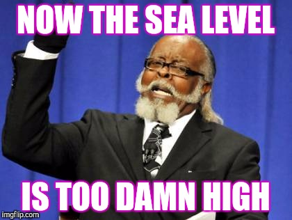 Too Damn High Meme | NOW THE SEA LEVEL IS TOO DAMN HIGH | image tagged in memes,too damn high | made w/ Imgflip meme maker